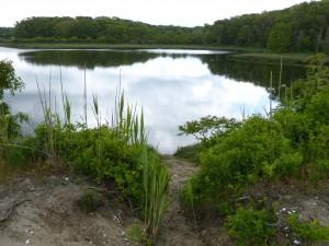 Cape Cod and Islands Water Protection Fund